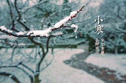4472,东风吹暖小寒生(原创) - 春风化雨 - 春风化雨的博客