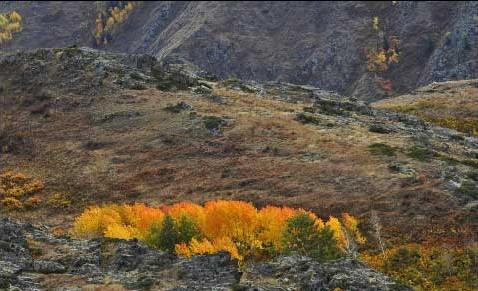 秋分养生——登山