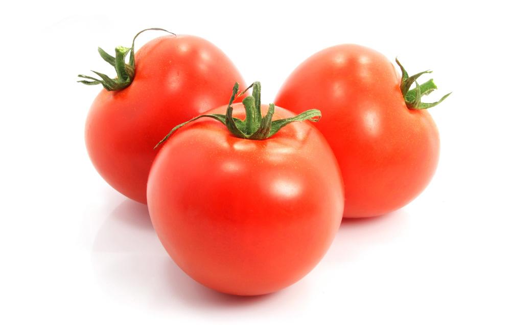 冬至期间阴雪天番茄要防冻防病害