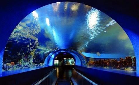 北京海洋馆旅游攻略