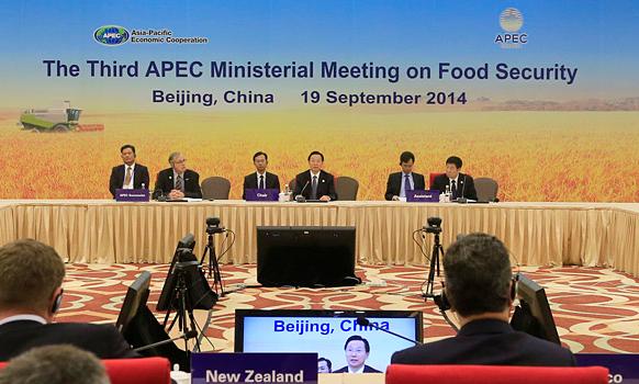 北京APEC会议期间单双号限行