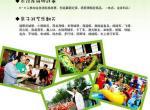东方绿舟龙舟赛 2012上海端午节龙舟赛活动攻略