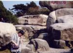 2007年冬天杭州西湖&普陀山