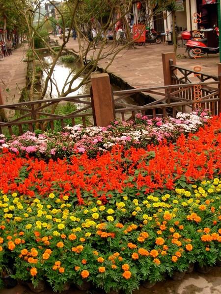 平乐古镇天台山二日游-20岁攻略独自旅行_成都旅行的蛙+生日图片