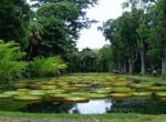 自由邦国家植物园