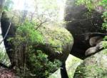 均峰山自然保护区
