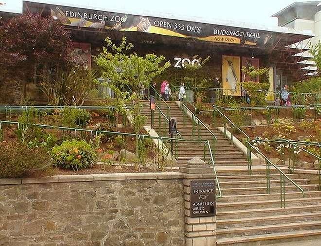 景点名称:爱丁堡动物园【英国】 外文名称:Edinburgh Zoo 必去理由:苏格兰最大的动物园 景点所在大洲:欧洲【Europe】 景点所在国家/地区:英国【Britain】 景点所在省、州:爱丁堡 【Edinburgh】 景点所在城市:爱丁堡 【Edinburgh】 景点简介: 爱丁堡动物园的正式全称是苏格兰国家动物园,创建于1913年,占地面积为82英亩,位于爱丁堡市区西郊约6公里处,是苏格兰第二大旅游热点,仅次于爱丁堡城堡。这是一个非营利性的动物园,其主要宗旨是激励和启发游客对动物的好奇心,提高