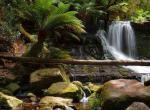 费尔德山国家公园