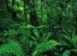 尤瑞瓦拉国家公园
