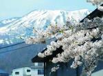 冬季日本旅游攻略