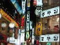 衡水出发 韩国邮轮七日游 (仁川--首尔-三八线)