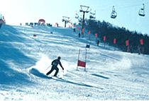 佛山 佳木斯/景点名称:卧佛山滑雪场 滑雪费用参考80元/人2小时;150元/人4...