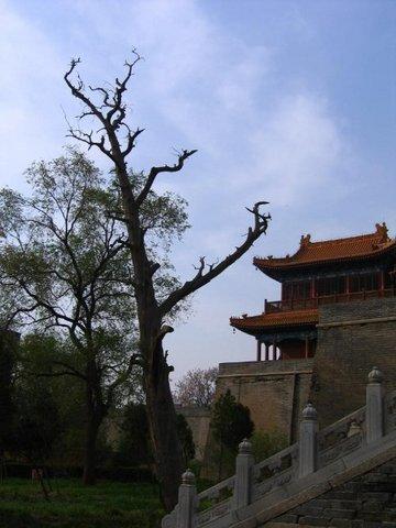西安西岳庙景点图片 西安西岳庙旅游景点照片 西安西岳庙2...