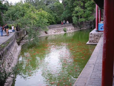 西安华清池景点图片 西安华清池旅游景点照片 西安华清池6...