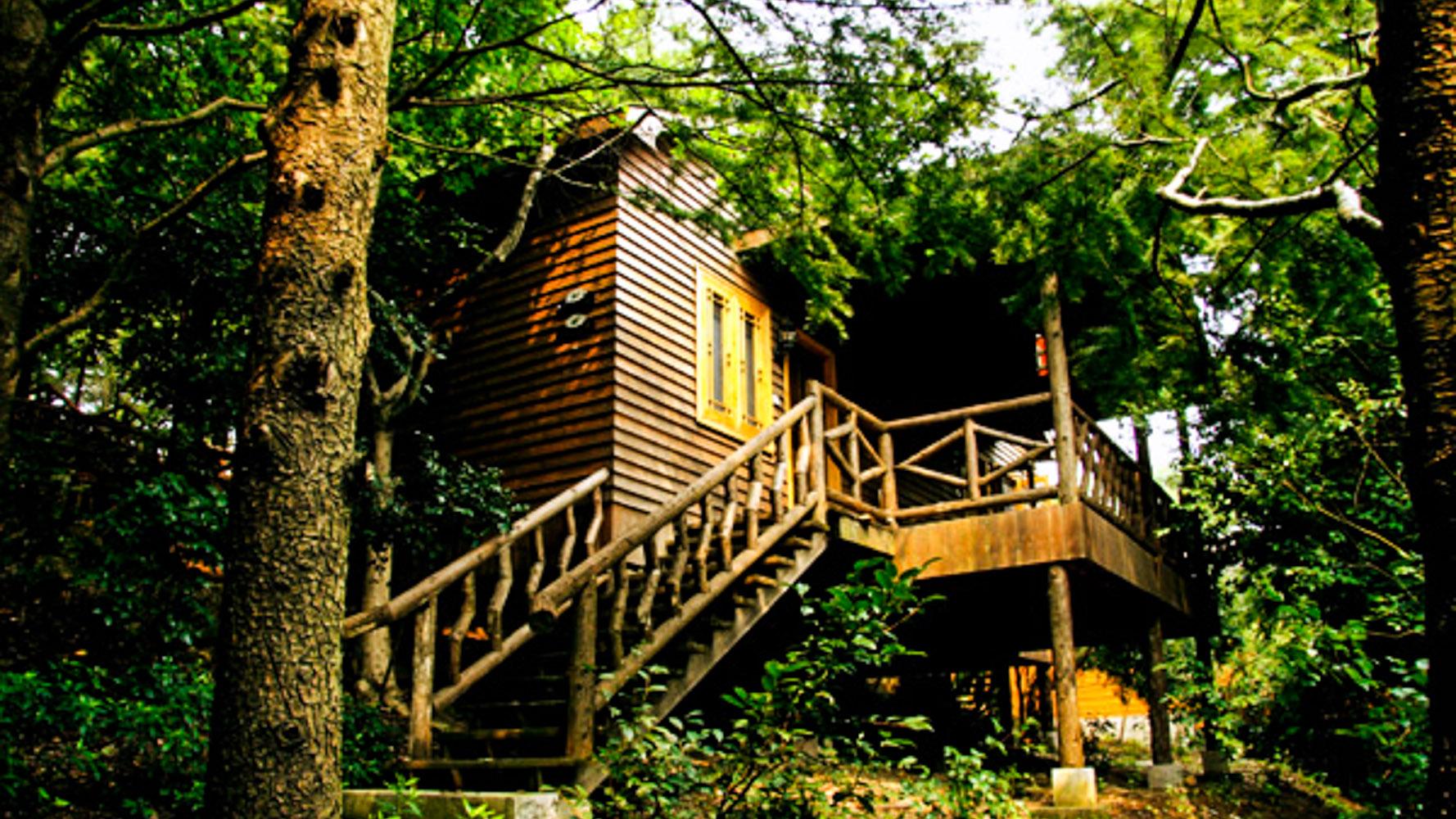 达蓬山庄木屋
