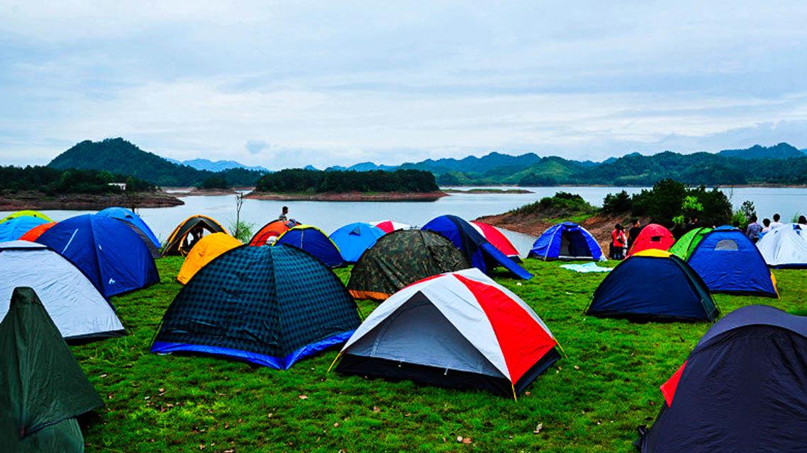 千岛湖排岭半岛驴营地